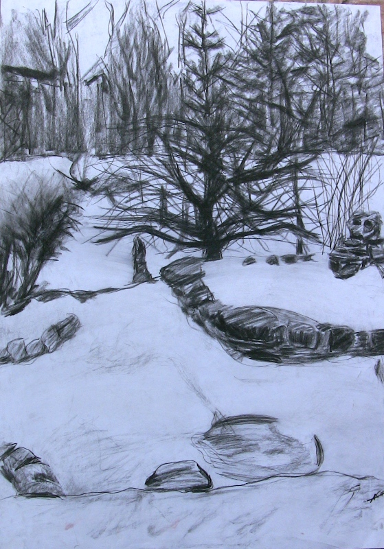 Forest - pencil and coal sketch by Anna Login.